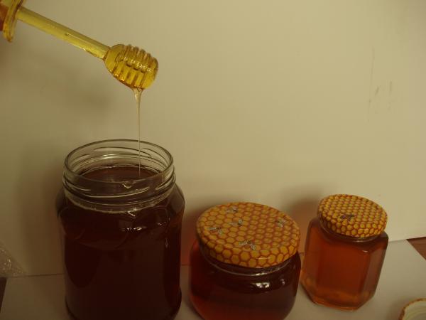 Miel de coriandre dans des bocaux en verre