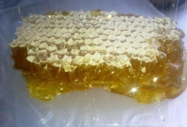 Peigne de miel trèfle fleur