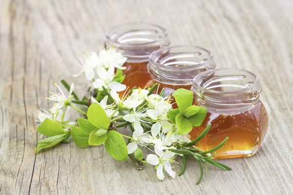 Miel d'Acacia Médicamenteux