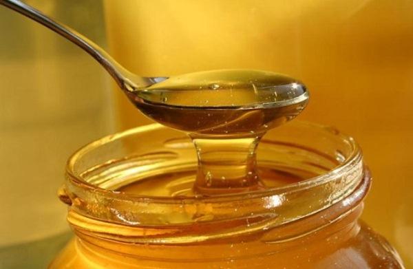 Miel de coriandre