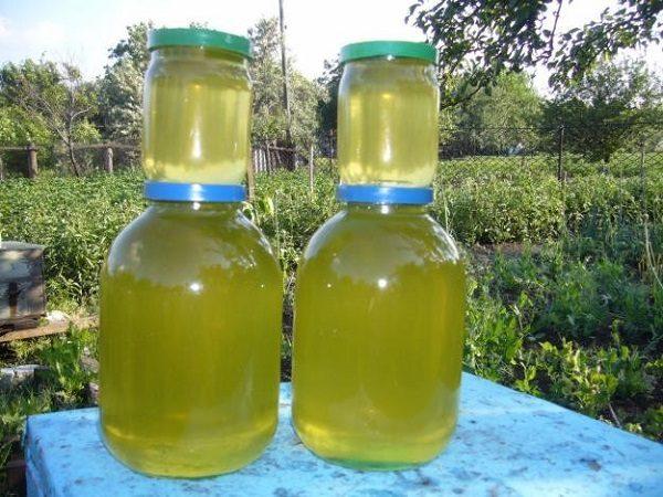 Miel d'acacia prêt