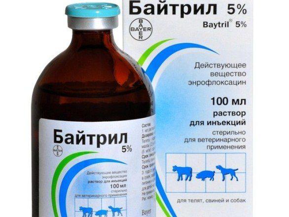 Solution de Baytril à 5%