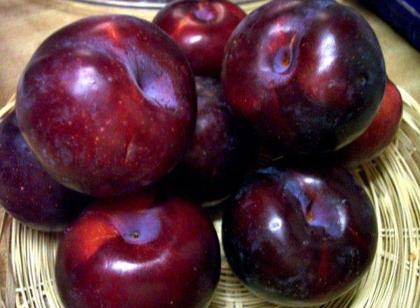 Les avantages et les inconvénients des prunes