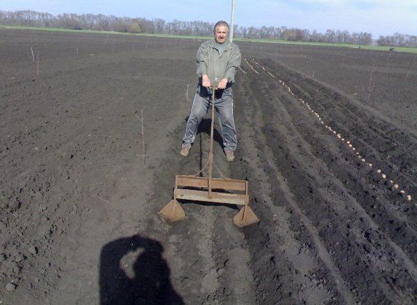 Planter des pommes de terre avec des appareils portatifs