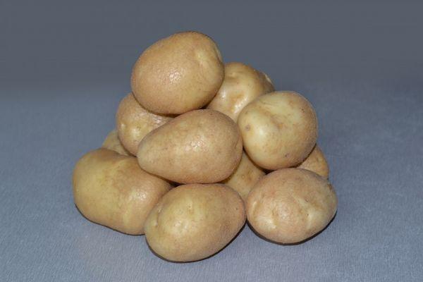 Variétés de pommes de terre chance