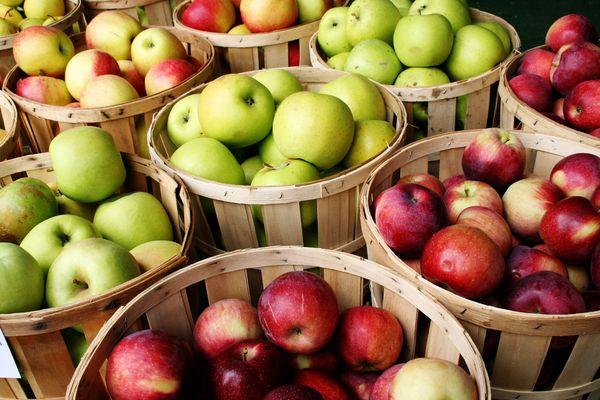 Les meilleures variétés de pommes