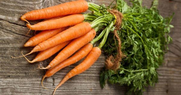 planter des carottes en utilisant la méthode kizima